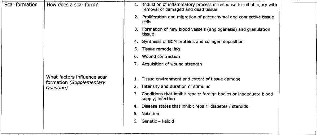 blood supply vascularization tortora anatomy